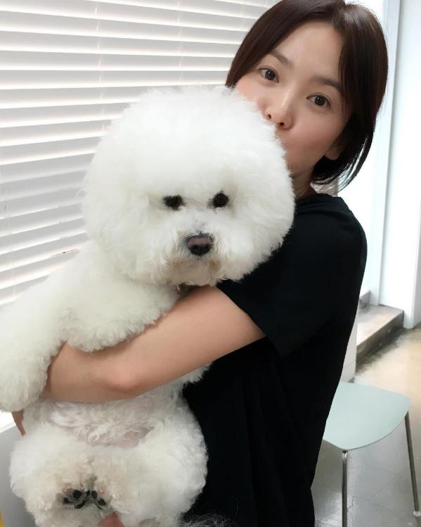 [스타한컷]송혜교, 사랑스러운 반려견과 행복 일상