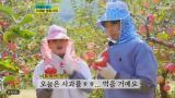 뽕숭아학당,장민호,영탁,임영웅,김희재,이연복